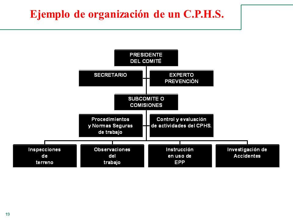 19 Ejemplo de organización de un C.P.H.S.