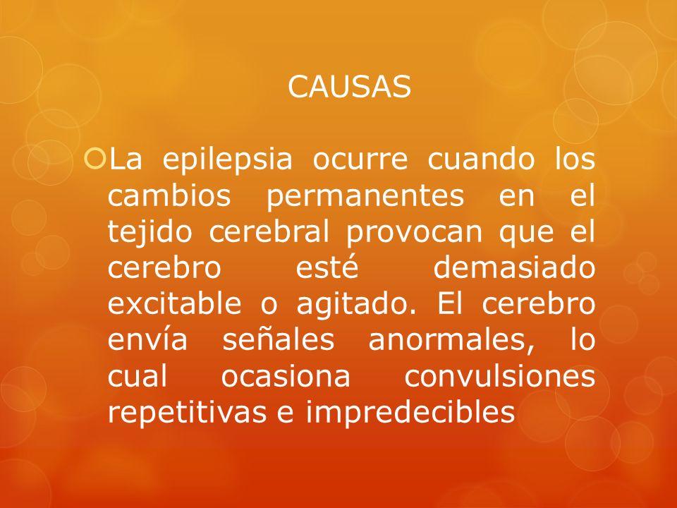 CAUSAS La epilepsia ocurre cuando los cambios permanentes en el tejido cerebral provocan que el cerebro esté demasiado excitable o agitado. El cerebro