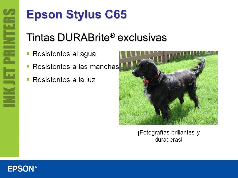 Epson Stylus C65 Resistentes al agua Resistentes a las manchas Resistentes a la luz ¡Fotografías brillantes y duraderas! Tintas DURABrite ® exclusivas