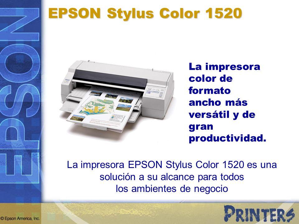 Cuatro Rutas de Papel Flexibles EPSON Stylus Color 1520 Bandeja de Papel Frontal para hojas de papel entre 10 cm x 10 cm y 43 cm x 55 cm.