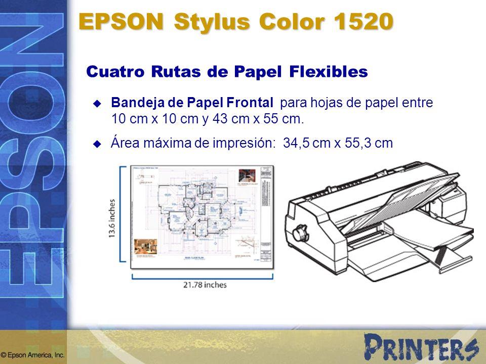 Cuatro Rutas de Papel Flexibles EPSON Stylus Color 1520 Bandeja de Papel Frontal para hojas de papel entre 10 cm x 10 cm y 43 cm x 55 cm. Área máxima