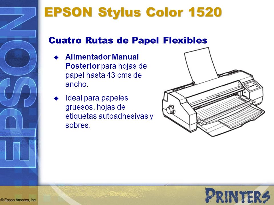 EPSON Stylus Color 1520 Cuatro Rutas de Papel Flexibles Alimentador Manual Posterior para hojas de papel hasta 43 cms de ancho. Ideal para papeles gru