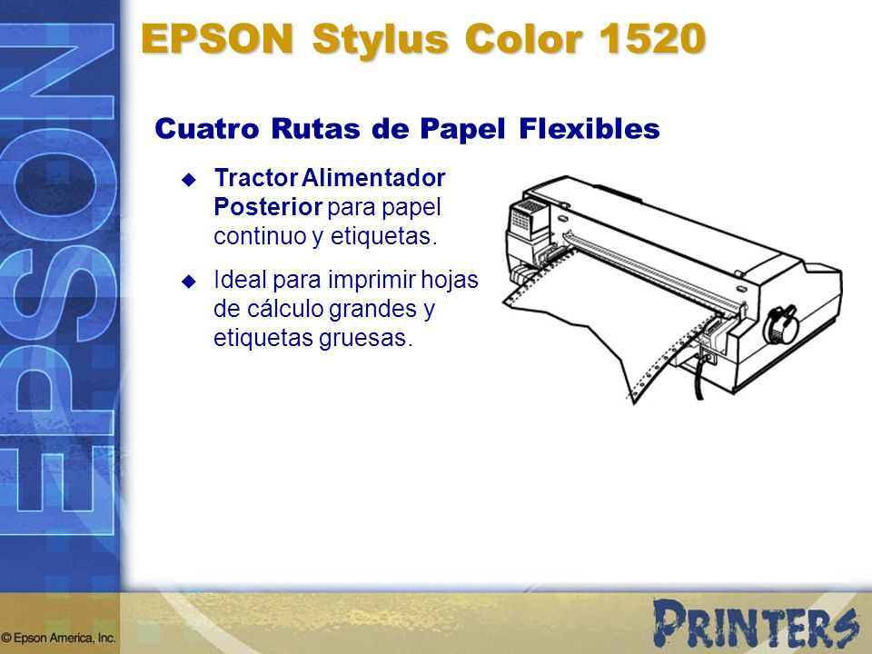 Tractor Alimentador Posterior para papel continuo y etiquetas. Ideal para imprimir hojas de cálculo grandes y etiquetas gruesas. EPSON Stylus Color 15