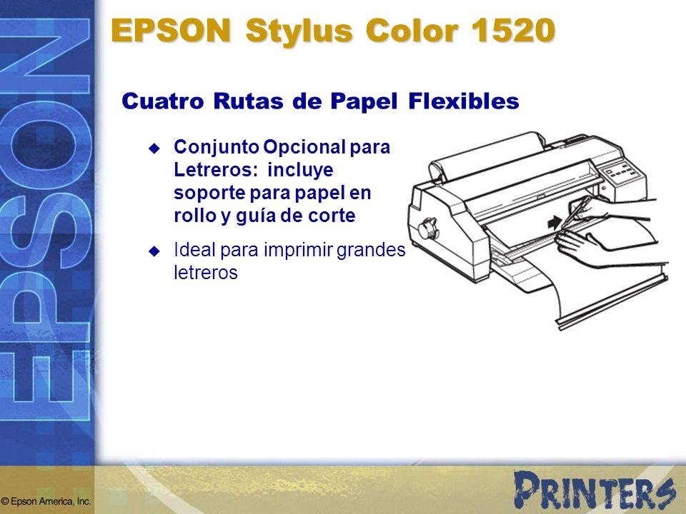 Conjunto Opcional para Letreros: incluye soporte para papel en rollo y guía de corte Ideal para imprimir grandes letreros EPSON Stylus Color 1520 Cuat