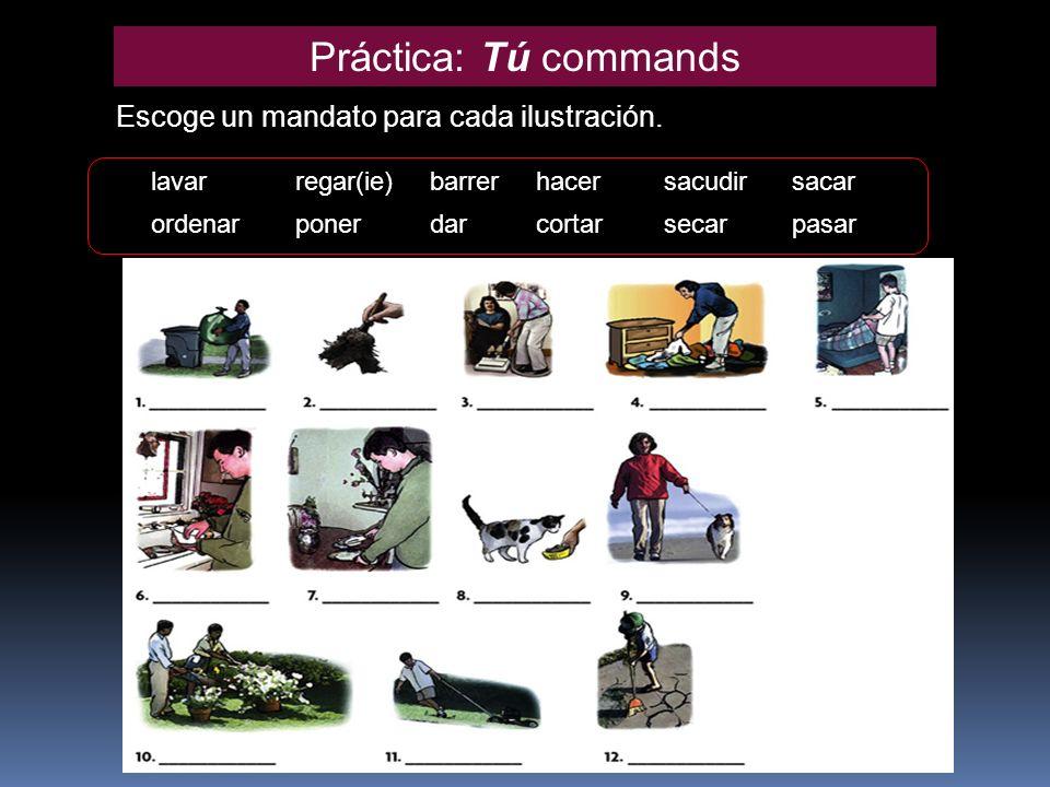 Práctica: Tú commands Escoge un mandato para cada ilustración. lavarregar(ie)barrerhacersacudirsacar ordenarponerdarcortarsecarpasar