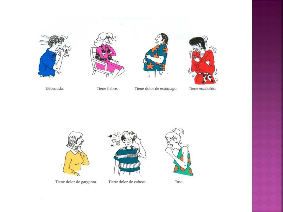 Práctica: Usted/Ustedes commands Crea mandatos con las siguientes opciones, terminando cada nuevo mandato con la frase por favor, primero en singular y luego en plural.