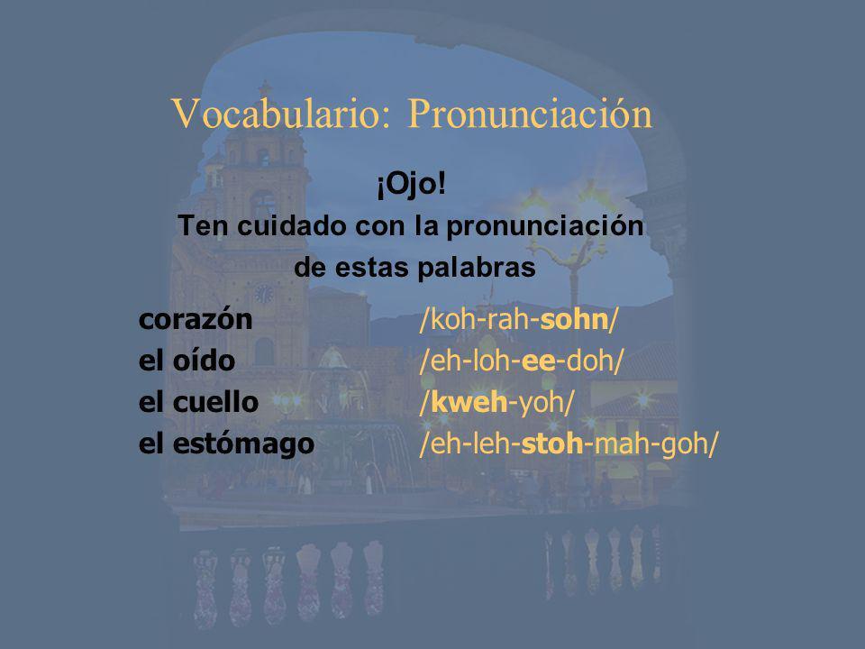 Vocabulario: Pronunciación ¡Ojo! Ten cuidado con la pronunciación de estas palabras corazón el oído el cuello el estómago /koh-rah-sohn/ /eh-loh-ee-do
