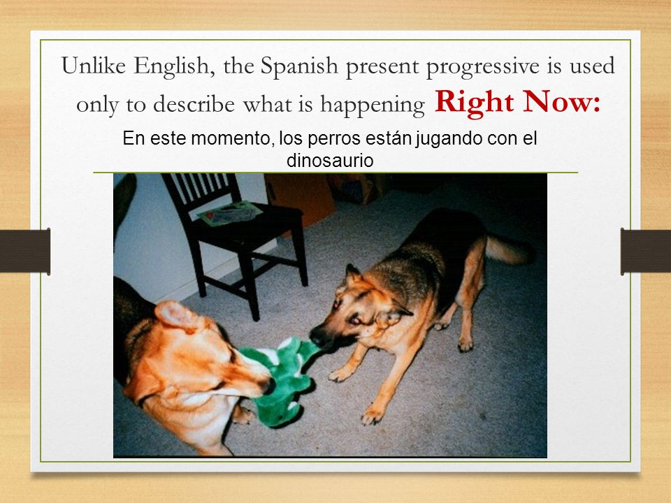 Unlike English, the Spanish present progressive is used only to describe what is happening Right Now: En este momento, los perros están jugando con el