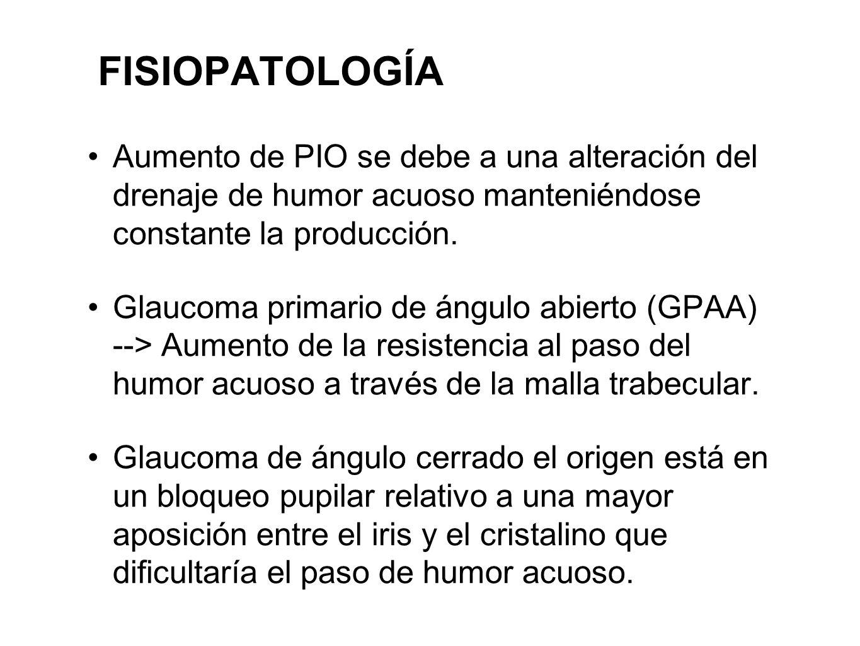 FISIOPATOLOGÍA Aumento de PIO se debe a una alteración del drenaje de humor acuoso manteniéndose constante la producción. Glaucoma primario de ángulo