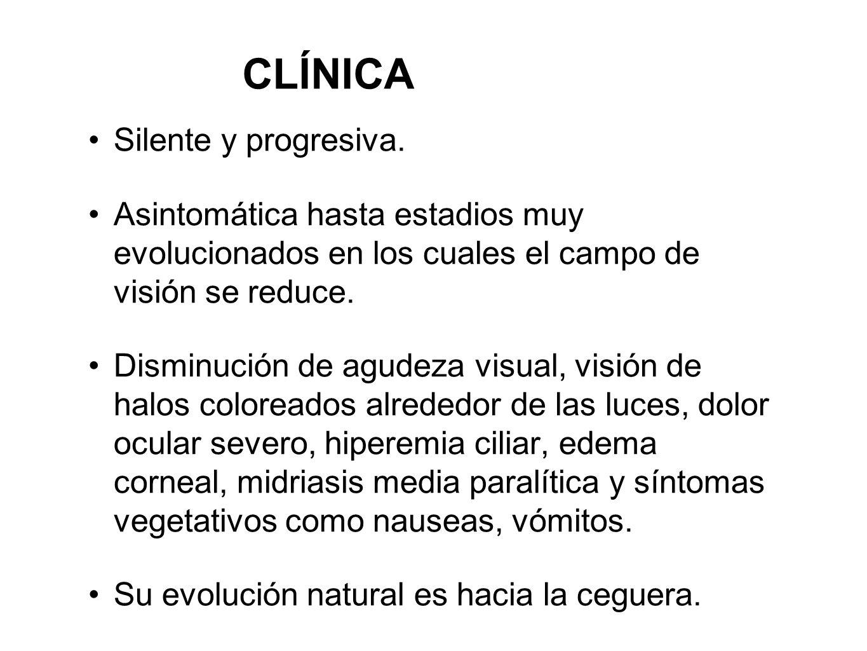 CLÍNICA Silente y progresiva. Asintomática hasta estadios muy evolucionados en los cuales el campo de visión se reduce. Disminución de agudeza visual,