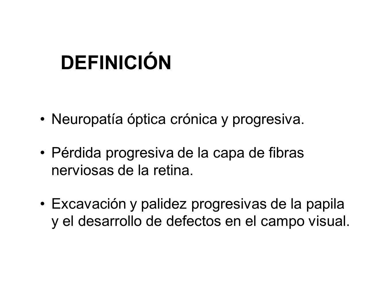 DEFINICIÓN Neuropatía óptica crónica y progresiva. Pérdida progresiva de la capa de fibras nerviosas de la retina. Excavación y palidez progresivas de