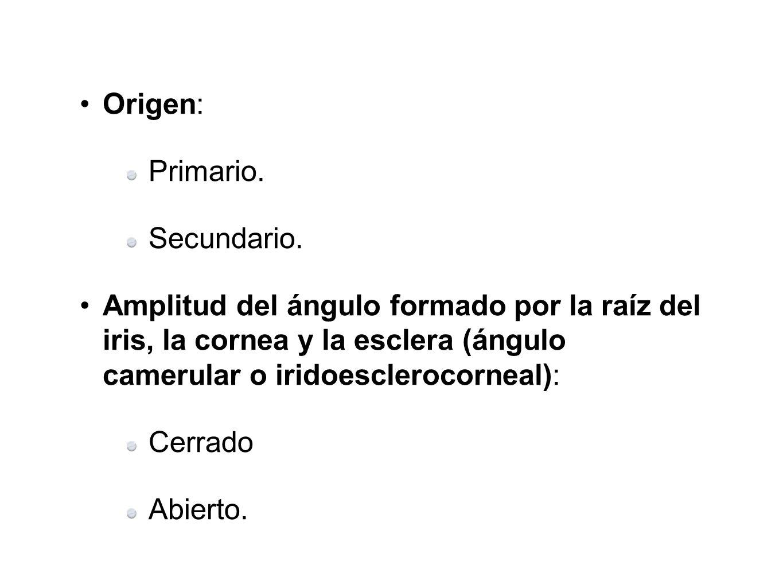 Origen: Primario. Secundario. Amplitud del ángulo formado por la raíz del iris, la cornea y la esclera (ángulo camerular o iridoesclerocorneal): Cerra