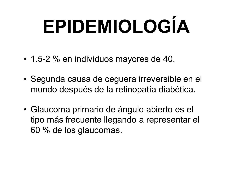 EPIDEMIOLOGÍA 1.5-2 % en individuos mayores de 40. Segunda causa de ceguera irreversible en el mundo después de la retinopatía diabética. Glaucoma pri