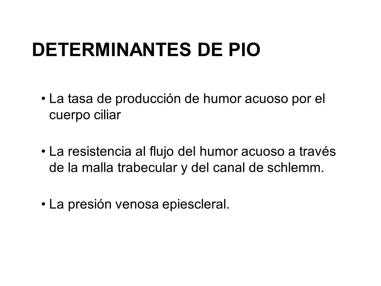 La tasa de producción de humor acuoso por el cuerpo ciliar La resistencia al flujo del humor acuoso a través de la malla trabecular y del canal de sch