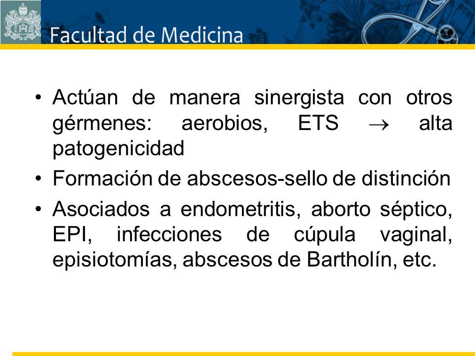Facultad de Medicina Carrera 7 No. 40-62 Hospital Universitario San Ignacio Bogotá COLOMBIA Actúan de manera sinergista con otros gérmenes: aerobios,