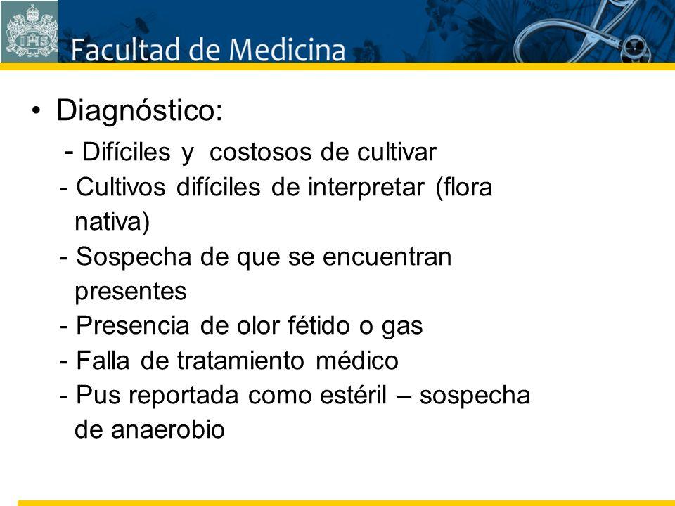 Facultad de Medicina Carrera 7 No. 40-62 Hospital Universitario San Ignacio Bogotá COLOMBIA Diagnóstico: - Difíciles y costosos de cultivar - Cultivos