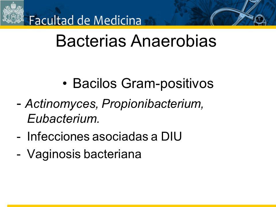 Facultad de Medicina Carrera 7 No. 40-62 Hospital Universitario San Ignacio Bogotá COLOMBIA Bacterias Anaerobias Bacilos Gram-positivos - Actinomyces,