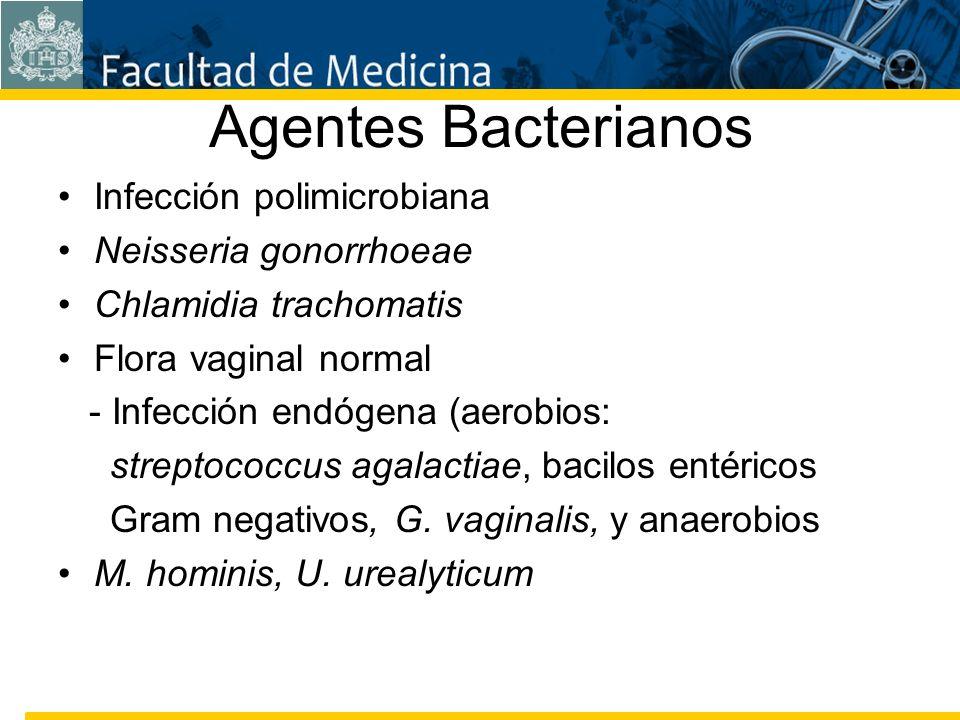 Facultad de Medicina Carrera 7 No. 40-62 Hospital Universitario San Ignacio Bogotá COLOMBIA Agentes Bacterianos Infección polimicrobiana Neisseria gon