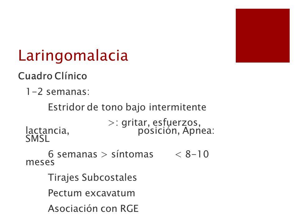 Cuadro Clínico 1-2 semanas: Estridor de tono bajo intermitente >: gritar, esfuerzos, lactancia, posición, Apnea: SMSL 6 semanas > síntomas < 8-10 mese