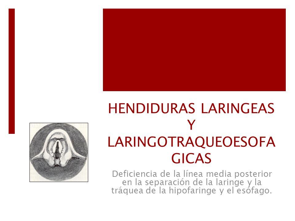 HENDIDURAS LARINGEAS Y LARINGOTRAQUEOESOFA GICAS Deficiencia de la línea media posterior en la separación de la laringe y la tráquea de la hipofaringe
