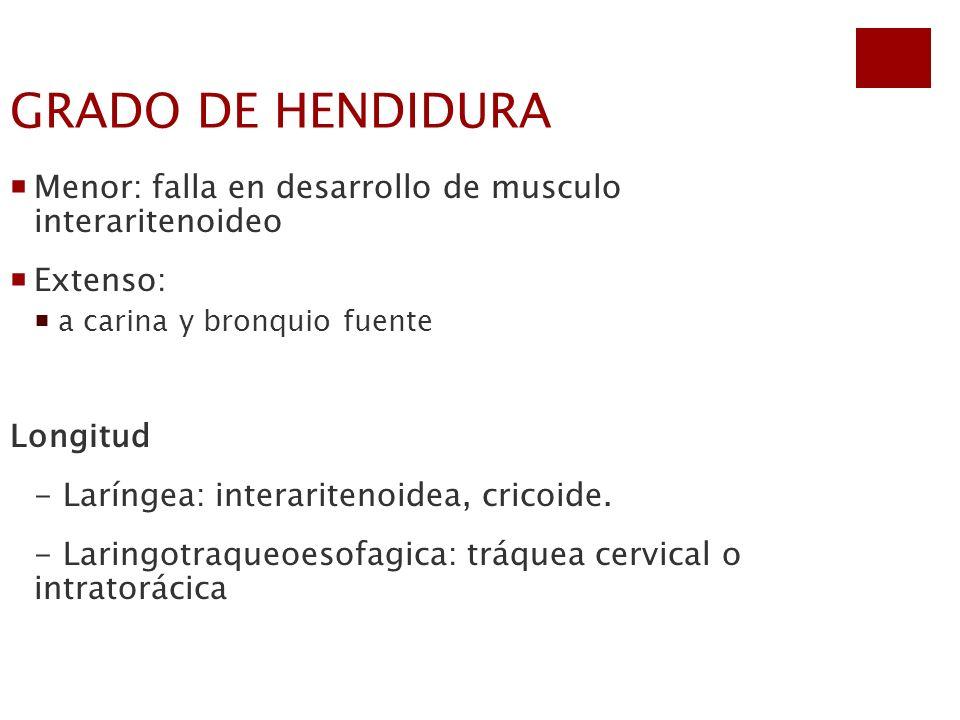 GRADO DE HENDIDURA Menor: falla en desarrollo de musculo interaritenoideo Extenso: a carina y bronquio fuente Longitud - Laríngea: interaritenoidea, c