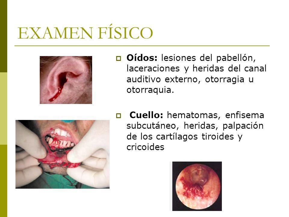 EXAMEN FÍSICO Oídos: lesiones del pabellón, laceraciones y heridas del canal auditivo externo, otorragia u otorraquia. Cuello: hematomas, enfisema sub