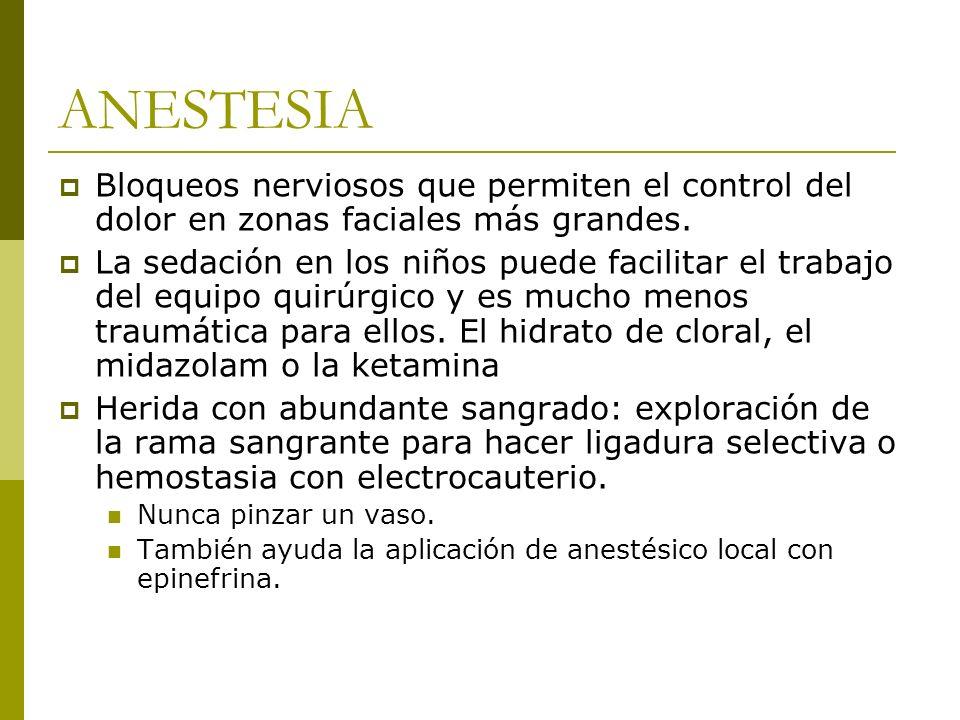 ANESTESIA Bloqueos nerviosos que permiten el control del dolor en zonas faciales más grandes. La sedación en los niños puede facilitar el trabajo del