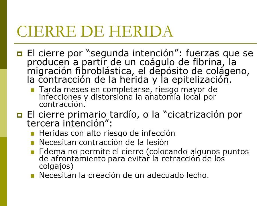 CIERRE DE HERIDA El cierre por segunda intención: fuerzas que se producen a partir de un coágulo de fibrina, la migración fibroblástica, el depósito d