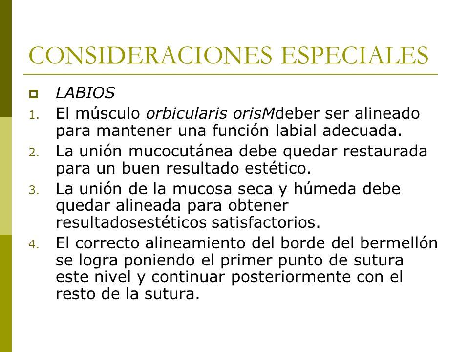 CONSIDERACIONES ESPECIALES LABIOS 1. El músculo orbicularis orisMdeber ser alineado para mantener una función labial adecuada. 2. La unión mucocutánea