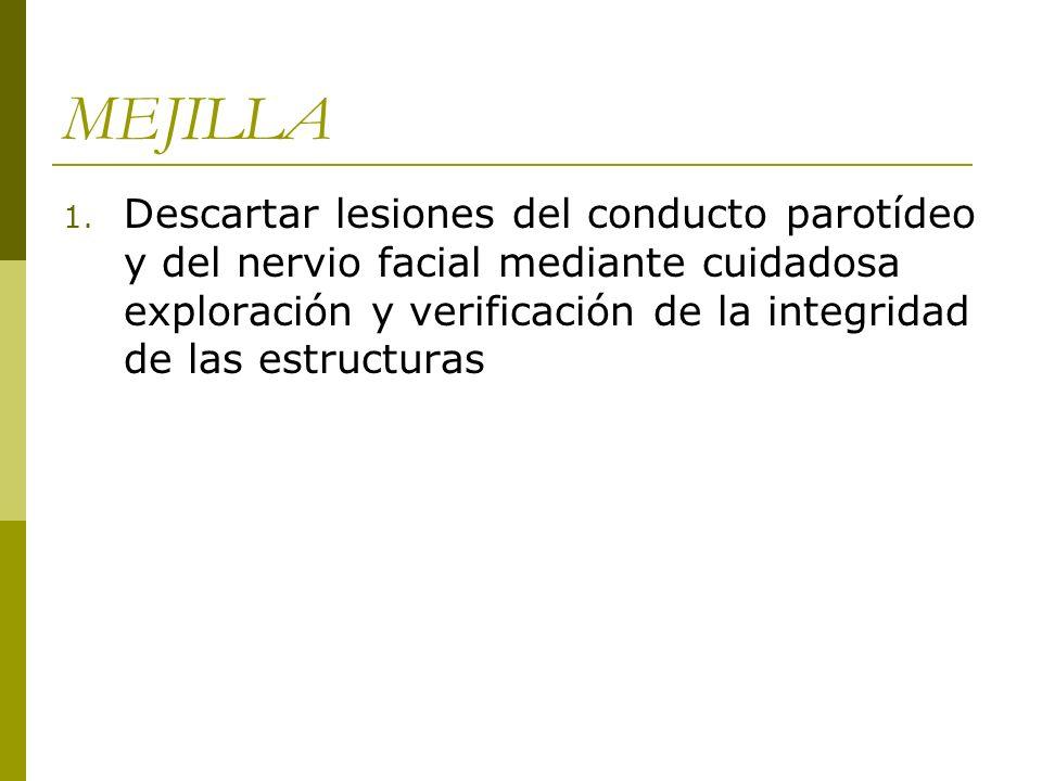MEJILLA 1. Descartar lesiones del conducto parotídeo y del nervio facial mediante cuidadosa exploración y verificación de la integridad de las estruct