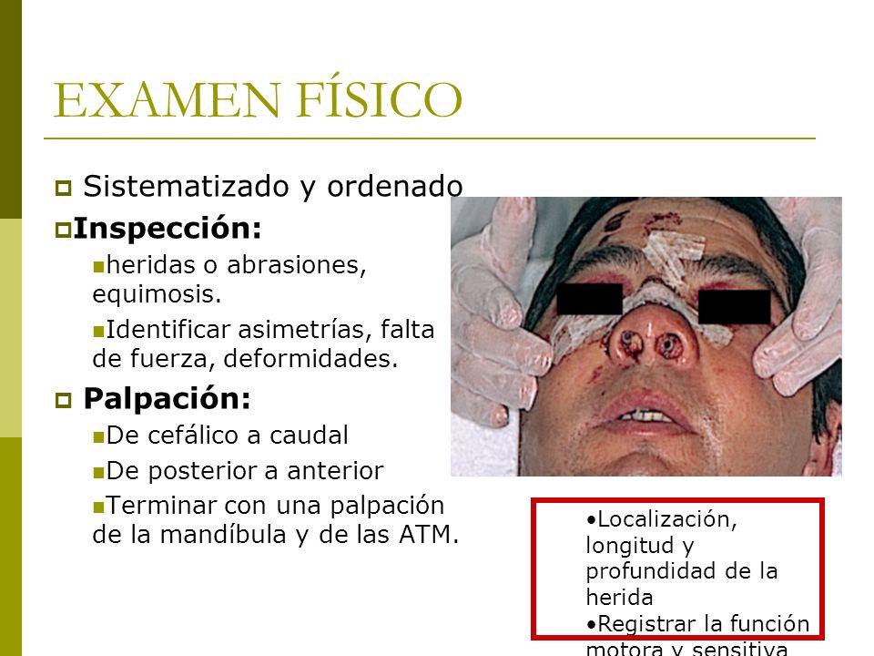 EXAMEN FÍSICO Sistematizado y ordenado Inspección: heridas o abrasiones, equimosis. Identificar asimetrías, falta de fuerza, deformidades. Palpación: