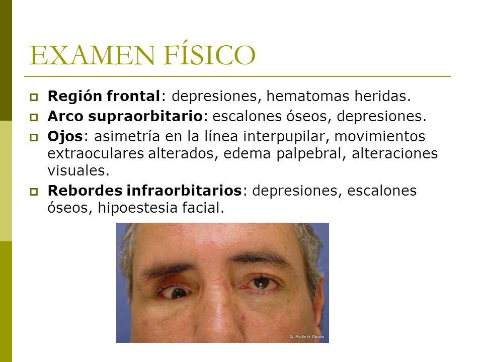EXAMEN FÍSICO Región frontal: depresiones, hematomas heridas. Arco supraorbitario: escalones óseos, depresiones. Ojos: asimetría en la línea interpupi