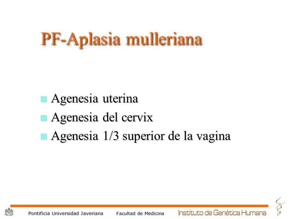® PF-Aplasia mulleriana n Agenesia uterina n Agenesia del cervix n Agenesia 1/3 superior de la vagina