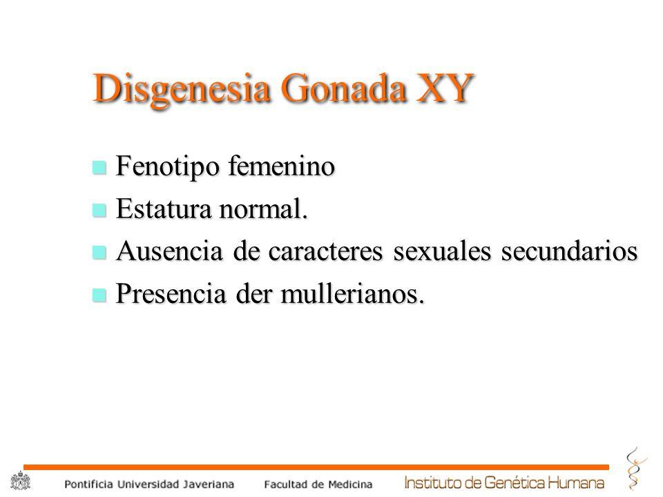 ® Disgenesia Gonada XY n Fenotipo femenino n Estatura normal. n Ausencia de caracteres sexuales secundarios n Presencia der mullerianos.