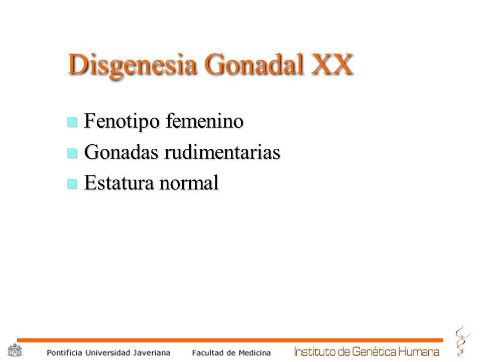 ® PF-Hiperplasia suprarenal congenita n 21 Hidroxilasa u Clitoromegalia u Fusion labio escrotal u Virilizacion.