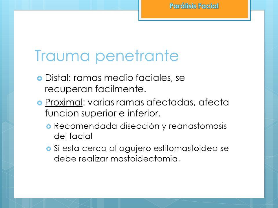 Trauma penetrante Distal: ramas medio faciales, se recuperan facilmente. Proximal: varias ramas afectadas, afecta funcion superior e inferior. Recomen