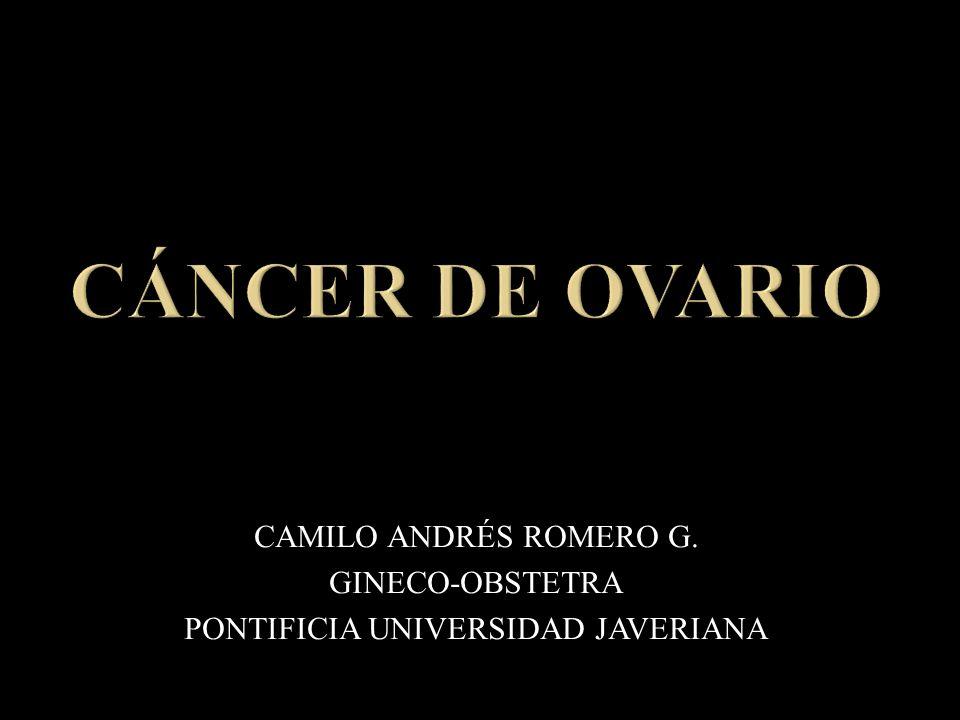 CAMILO ANDRÉS ROMERO G. GINECO-OBSTETRA PONTIFICIA UNIVERSIDAD JAVERIANA