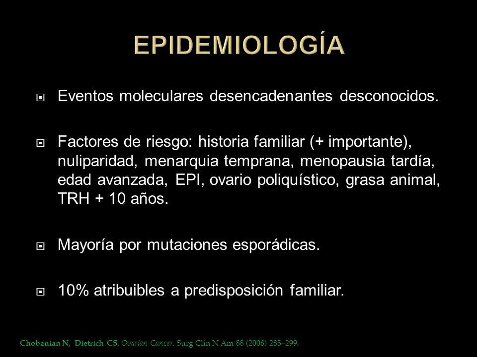 Eventos moleculares desencadenantes desconocidos. Factores de riesgo: historia familiar (+ importante), nuliparidad, menarquia temprana, menopausia ta