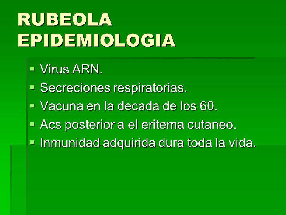 RUBEOLA EPIDEMIOLOGIA Virus ARN. Virus ARN. Secreciones respiratorias. Secreciones respiratorias. Vacuna en la decada de los 60. Vacuna en la decada d