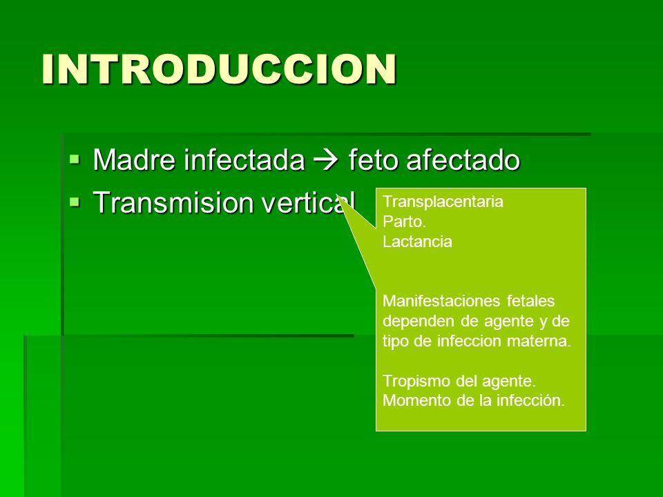 INTRODUCCION Madre infectada feto afectado Madre infectada feto afectado Transmision vertical Transmision vertical Transplacentaria Parto. Lactancia M