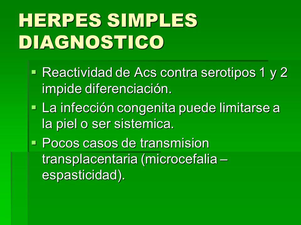 HERPES SIMPLES DIAGNOSTICO Reactividad de Acs contra serotipos 1 y 2 impide diferenciación. Reactividad de Acs contra serotipos 1 y 2 impide diferenci