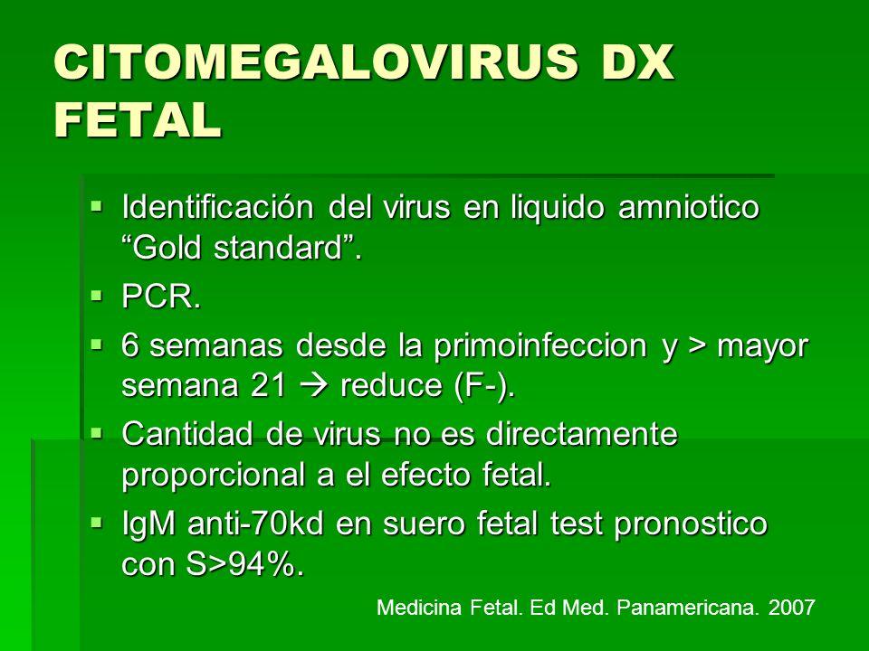CITOMEGALOVIRUS DX FETAL Identificación del virus en liquido amniotico Gold standard. Identificación del virus en liquido amniotico Gold standard. PCR