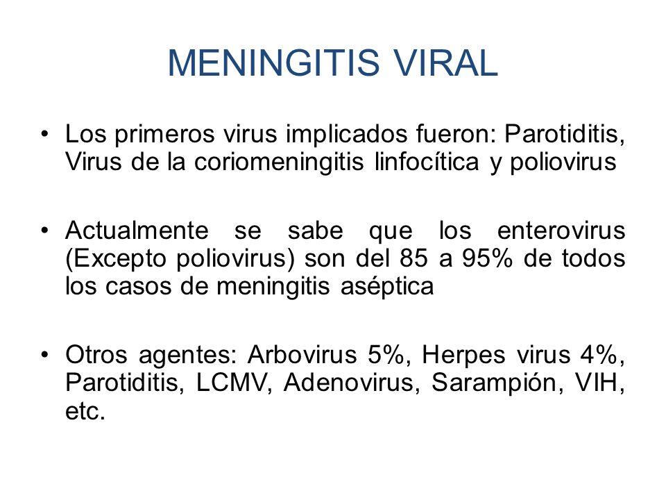 MENINGITIS VIRAL Los primeros virus implicados fueron: Parotiditis, Virus de la coriomeningitis linfocítica y poliovirus Actualmente se sabe que los e