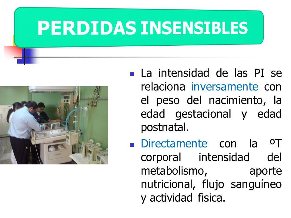 La intensidad de las PI se relaciona inversamente con el peso del nacimiento, la edad gestacional y edad postnatal. Directamente con la ºT corporal in