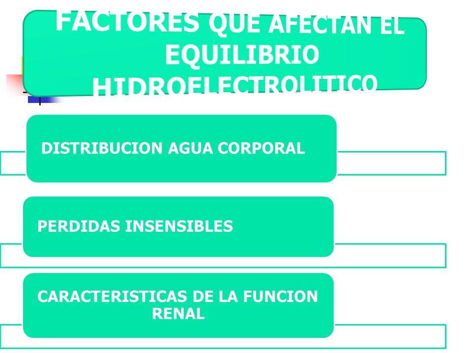 DISTRIBUCION AGUA CORPORAL PERDIDAS INSENSIBLES CARACTERISTICAS DE LA FUNCION RENAL