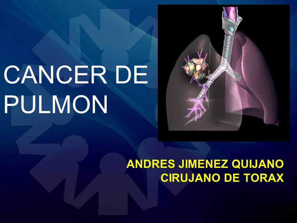 CANCER DE PULMON EPIDEMIOLOGIA Y CARCINOGENESIS -116.750 Nuevos casos en hombre y 105.770 en mujeres USA 2010 -Primera causa de muerte por Ca (colon seno prostata).