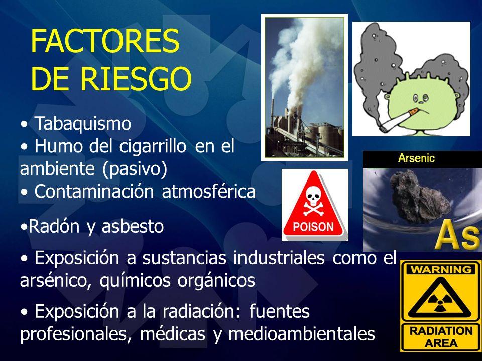 Tabaquismo Humo del cigarrillo en el ambiente (pasivo) Contaminación atmosférica FACTORES DE RIESGO Radón y asbesto Exposición a sustancias industrial