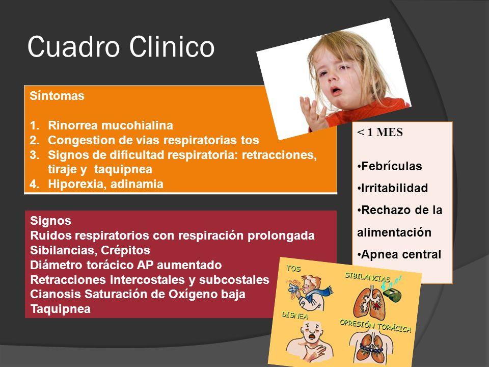Cuadro Clinico Síntomas 1.Rinorrea mucohialina 2.Congestion de vias respiratorias tos 3.Signos de dificultad respiratoria: retracciones, tiraje y taqu