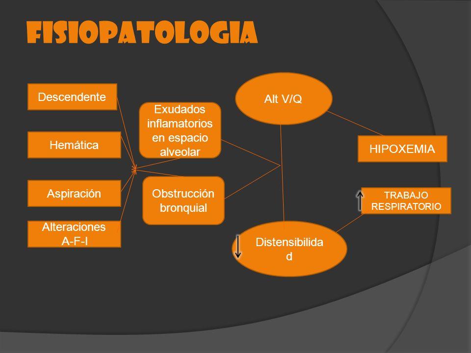 FISIOPATOLOGIA Descendente Hemática Aspiración Alteraciones A-F-I Exudados inflamatorios en espacio alveolar Obstrucción bronquial Alt V/Q Distensibil
