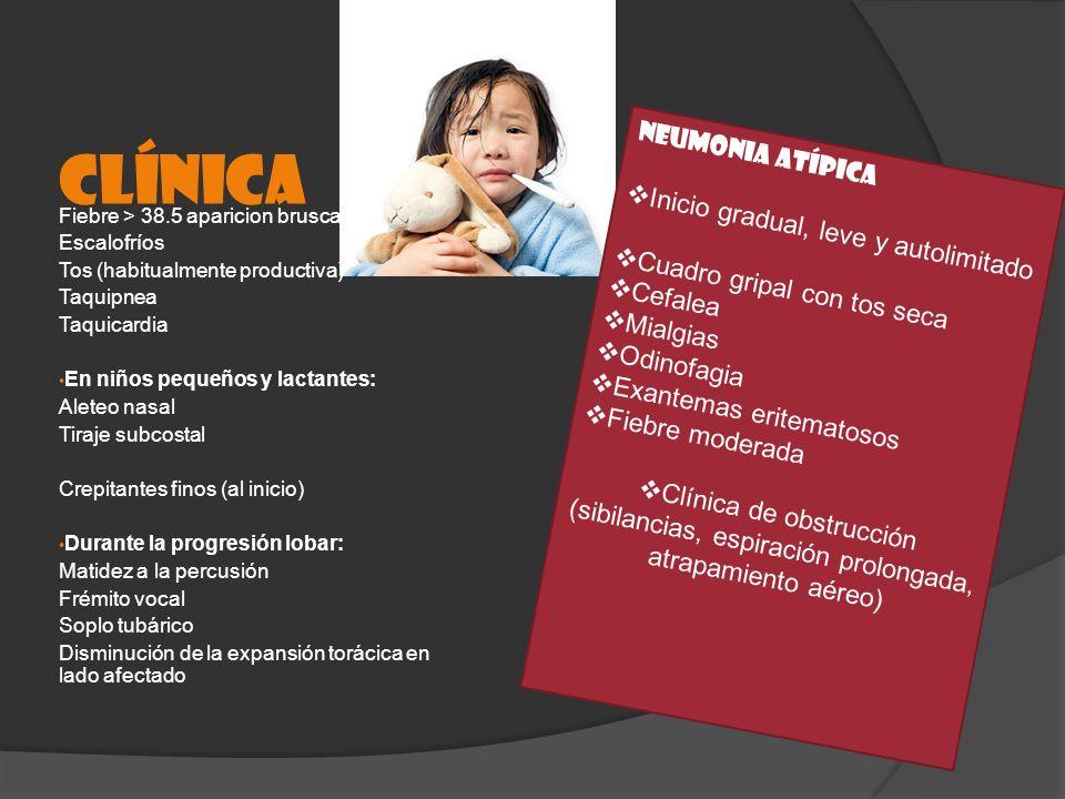 CLÍNICA Fiebre > 38.5 aparicion brusca Escalofríos Tos (habitualmente productiva) Taquipnea Taquicardia En niños pequeños y lactantes: Aleteo nasal Ti